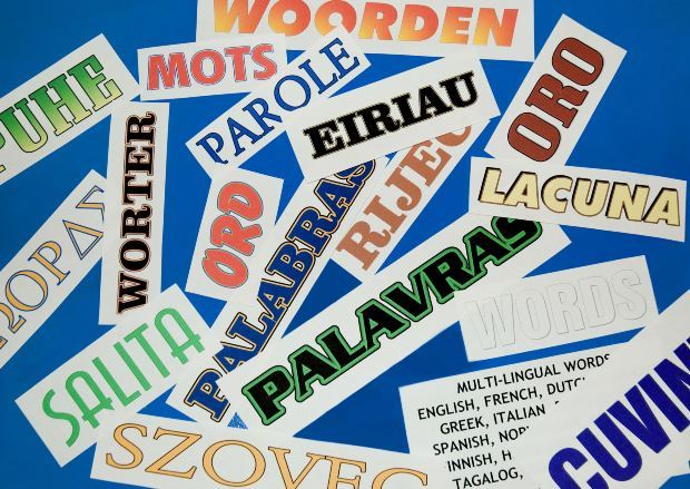What is your preferred language for your children to learn other than English?